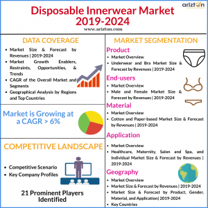 Global Disposable Innerwear Market Overview 2024
