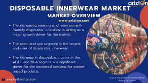 Summary Image of Global Disposable Innerwear Market 2024