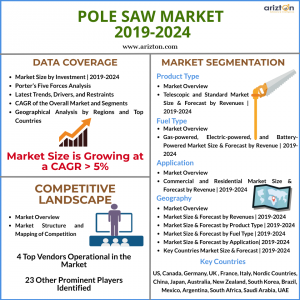 Global Pole Saw Market Overview 2024
