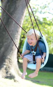 Swurfer Kiwi - Blue, happy boy in swing, sunny day by a tree