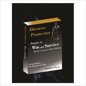 Divorce Protector book cover.