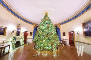 The Official White House Christmas Tree Surrounded by Custom Gold Toned Ropes from Lavi Industries