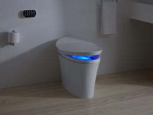 Smart (Intelligent) Toilet Market