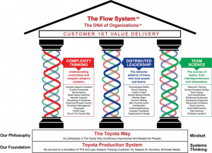 The Flow System (TM)
