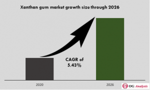 Global Xantham Gum Market