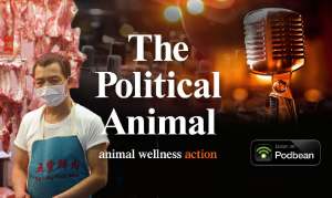 The Political Animal Podcast Episode 8