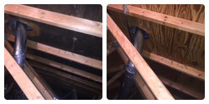 Attic Mold Removal Process