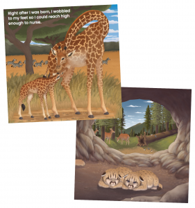 Two pictures show mammal babies from the book. On the top/left, a newborn giraffe nurses from its mother as zebras pass in the background. On the right/bottom, two tiny cougar cubs nap in a cave, deer and birds outside of the cave behind them.
