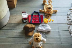 lion doll, bag, hat, lantern amenities