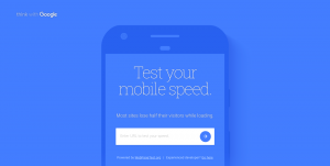 How to speed up your WordPress Website using Google Speed Test