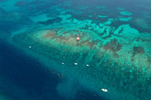 Boats at Carysfort Reef in the Florida Keys at Coralpalooza™ 2019