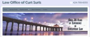 Website of Curt Surls, Employment Law Specialist