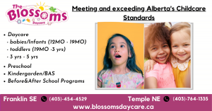 1) Daycare       - babies/Infants (12MO - 19MO)      - toddlers (19MO -3 yrs)      - 3 yrs - 5 yrs. 2)Preschool 3)Kindergarden/BAS 4)Before&After School Programs  at two locations in calgary - Franklin SE and Temple NE. Visit- https://blossomsdaycare.ca/