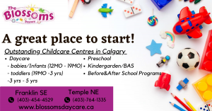 A great place to start 1) Daycare       - babies/Infants (12MO - 19MO)      - toddlers (19MO -3 yrs)      - 3 yrs - 5 yrs. 2)Preschool 3)Kindergarden/BAS 4)Before&After School Programs  at two locations in calgary - Franklin SE and Temple NE. Visit- https