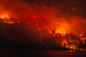 Northwest Advanced BioFuels Forest Fires United States