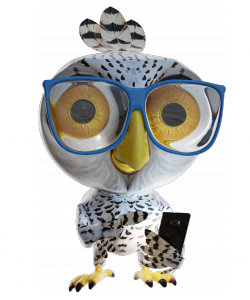 Martti S. (Aka Smartti) is a snowy owl who is looking for a sustainable place to live.
