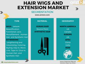 Hair Wigs and Extension Market Segments and Analysis 2023