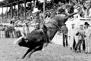 World Champion bull rider Lane Frost Last Ride photography by Randy Wagner