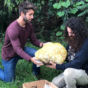 Rooted Host Nick with Mushroom Forager Tug de Luce