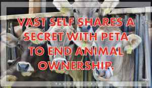 Vast Self shares a secret with Peta to end animal ownership.