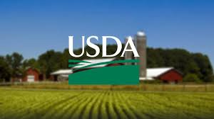 USDA Feasibility Study Providers Call 1.888.661.4449