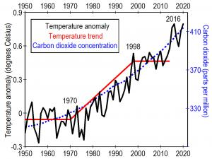 Carbon dioxide concentrations (dashed blue line) have increased steadily while annual average temperature anomalies (black line) changed very little from 1950 to 1970 and from 1998 to 2014 (red line).