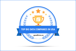 Top Big Data Companies in USA