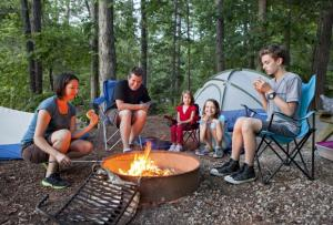 Picture of a Family Camping by a Fire