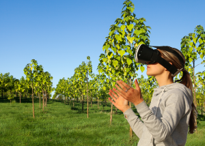 A woman uses Virtual Reality to visit a World Tree farm.