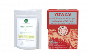 Paeonia lactiflora - White Peony Root - YOWZA Inflammation Support - Linden Botanicals