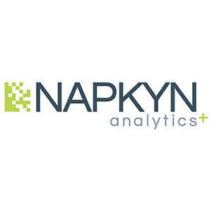 Napkyn Analytics is a digital analytics consulting and engineering company