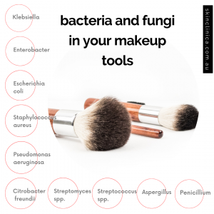 Infographic showing specific types of bacteria and fungi found in cosmetics, makeup brushes and beauty blenders. These include Escherichia coli, Enterobacter, Staphylococcus, Streptomyces, Penicillium and Aspergillus.