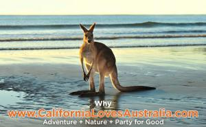 Live in California Time to Travel and Experience Australia Participate in Recruiting for Good to Earn Travel Savings #rewardingaustralia #californialovesaustralia www.CaliforniaLovesAustralia.com