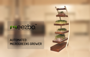 Indoor Microgreens grower