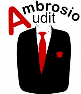 OFFICIAL LOGO OF AMBROSIO AUDIT INTERNATIONAL NETWORK