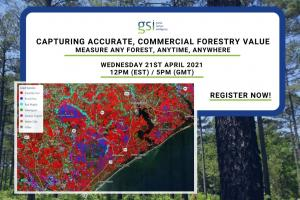Capturing Accurate Commercial Forestry Value