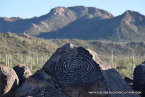 Signal Hill.  Saguaro National Park-West