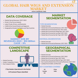 Hair Wigs and Extension Market Overview 2023
