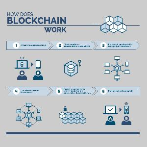 Paul and Paul Blockchain Infographic