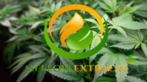 Mellow Extracts