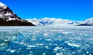 Want to Gift Your Kid a Fun B-Day Trip to Alaska? www.SeetheWorldforGood.com