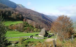 wildlife and birding in Cantabria