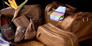Global Luggage and Leather Goods Market