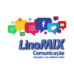 Logo of the agency LinoMix, with its slogan. '' Seeking Your Audience Online. ''