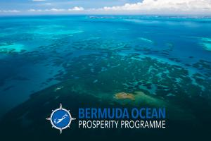 Bermuda's island economy and habitats will both improve with the creation of Marine Protected Areas in 20% of the country's EEZ.
