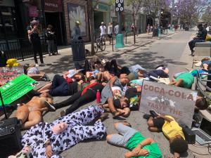 protesters lie on the ground to symbolize dead piles of animals
