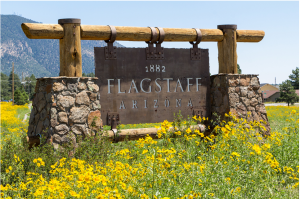 Flagstaff Arizona Sign surrounded by wild-flowers