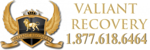 Valiant Recovery Addiction Treatment