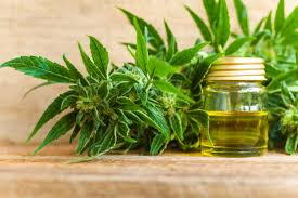 Global Cannabidiol (CBD) Market