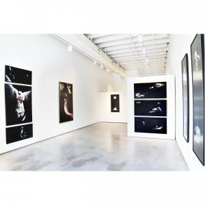 Exhibit by aberson showing paintings by Linda Cosgrove.  Featured art is black and white large scale scurrealistic paintings in black and white.